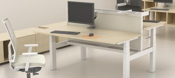 Sit Stand Desks BPF